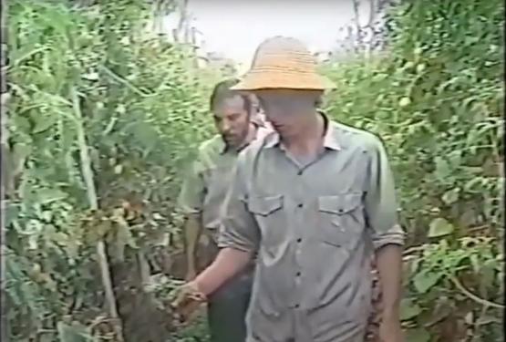 FAE & Cooperativa Coolméia no Globo Rural de 1996