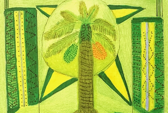 Lançamento ~ Livro bilíngue reúne Desenhos e Histórias da Cultura Guarani